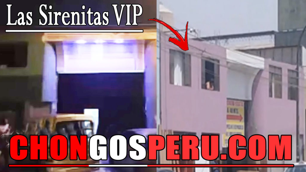 Las Sirenitas VIP Chongo Los Olivos chongo peru