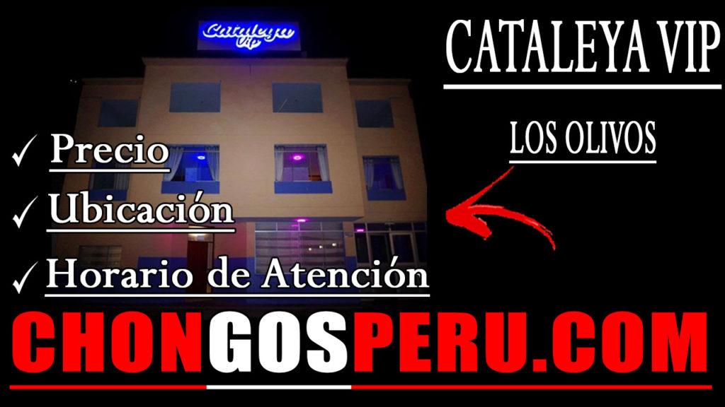 Cataleya VIP los olivos precio ubicacion horario de atencion