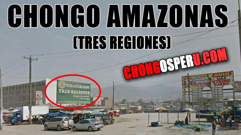 Chongo amazonas tres regiones en puente piedra lima peru